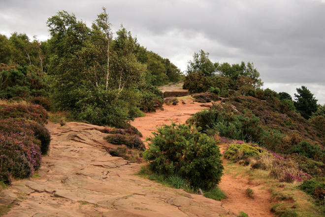 Thurstaston Hill